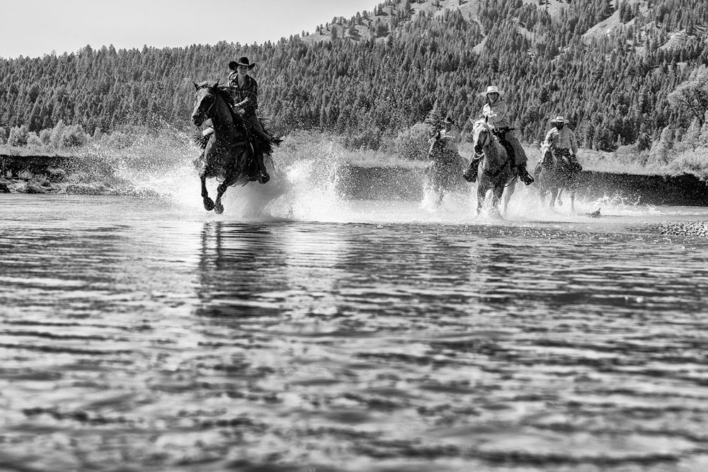 Four horses run through the Snake River in Grand Teton National park for the mentor series workshop
