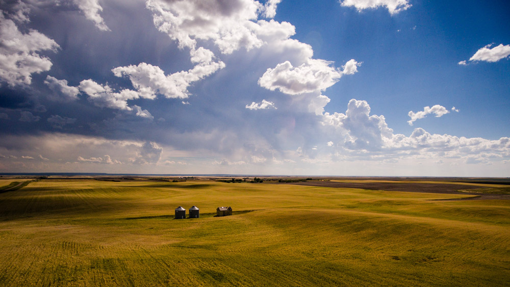 A wide prairie field to entice you to explore saskatchewan