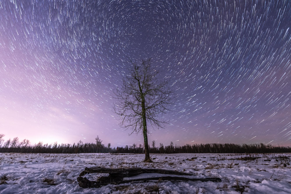 Learn how to photograph star trails with this easy-to-follow tutorial.