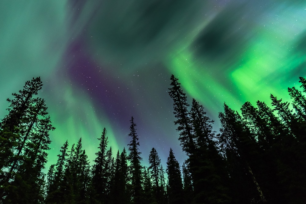 Northern lights soar above Jasper National Park, something to look forward to during the Canadian Rockies Dark Sky Photography Workshop